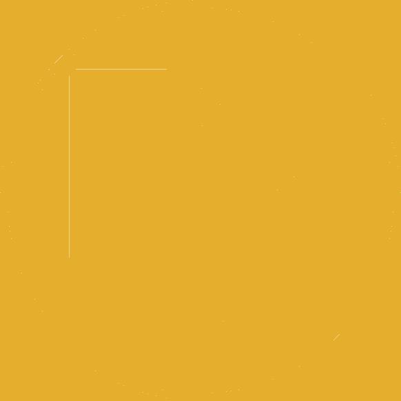 flexible-orientation-icon