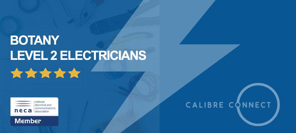 level-2-electrician-botany