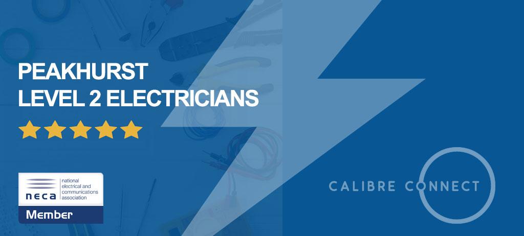 level-2-electrician-peakhurst