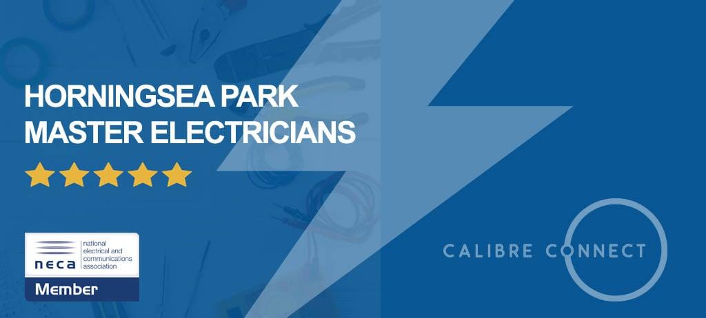 electrician-horningsea-park