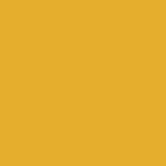 proctection-icon